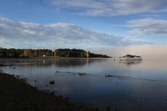 Te Anua, New Zealand - Lake Te Anua (Regan Gilder) Tags: newzealand lake water ferry boat ducks bluesky southisland southland freshwater ferryboat teanua laketeanua canoneos5dmarkiii