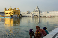 Ritual Bath (Fred Chvtn) Tags: travel family india water kids temple golden kid bath faith prayer devotion ritual sikh amritsar ablution