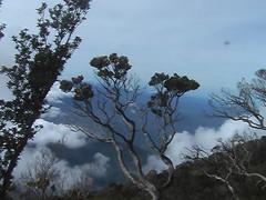 View Climbing Mount Kinabalu