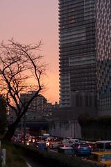 DS7_4586.jpg (d3_plus) Tags: sunset sky japan walking twilight nikon scenery bokeh dusk room daily rainy   nightshots nik nightview yokohama nikkor50mmf18 nikkor 50mmf18d      dailyphoto  kawasaki  thesedays  50mmf18     afnikkor50mmf18  d700 nikond700 50mmf18s aiafnikkor50mmf18 nikonaiafnikkor50mmf