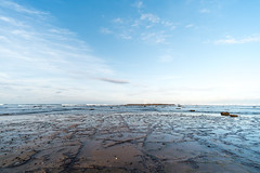 M1140379.jpg (meerecinaus) Tags: longreef beach collaroy newsouthwales australia au