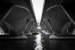 Bumboat under the bridge (ivnseow) Tags: singapore river monochrome black white boat bumboat sampan symmetric street photography reflection merlion