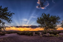 Sunset (inlightful) Tags: sun sunset sunrise evening morning dusk dawn sunshine sky clouds sunrays sunbeams rays crepuscularrays trees dirtroad rural southwest desert summer newmexico