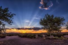 Sunset (inlightful) Tags: sun sunset sunrise evening morning dusk dawn sunshine sky clouds sunrays sunbeams rays crepuscularrays trees dirtroad rural southwest desert summer newmexico