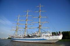 Tall Ship's Race 2016 Mir DST_4280 (larry_antwerp) Tags: mir antwerp antwerpen       port        belgium belgi          schip ship vessel        schelde        tallshipsrace