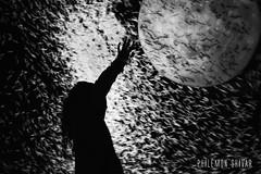 Invasion (Philmon Shivar) Tags: france art expo apocalypse picture exhibition ombre exposition ciel invader invasion artistique photographe trange plante
