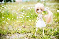 Summer '16 (Aienhime) Tags: doll groove pullip marya angelicpretty sfoglia cancanwig rewigged