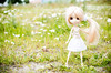 Summer '16 (Aienhime) Tags: doll groove pullip marya angelicpretty sfoglia cancanwig rewigged
