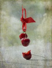 """A second bite of the cherry"" (Elisafox22 slowly catching up again!) Tags: elisafox22 sony ilca77m2 100mmf28 macro macrolens telemacro sliderssunday hss cherry cherries bite fruint red ribbon floating suspended magritte photoshop texture postprocessing texturing textures elisaliddell©2016 stilllife"