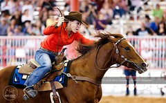 Cowgirl Barrel Racing (Mario Houben | Photography) Tags: davieprorodeo rodeo cowgirl danger motion sport animal animalthemes animalwildlife careless cultures mammal oneanimal oneperson indoorarena photography risk actionphotography sportsphotography mariohoubenphotography prca professionalrodeo southflorida competition canoneos1dx barrelracing davie florida broward