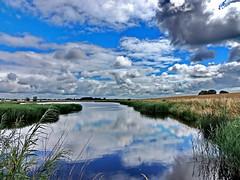 am see (Wunderlich, Olga) Tags: landscape wasser sommer insel grn blau rgen spiegelung deu schilf mecklenburgvorpommern wolkenhimmel