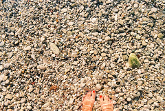 Vacation mode on! (Misiska) Tags: summer vacation legs feet fromwhereistand sea seacrab crab rocks stones beach sunshine tan adventure light film filmshooters f100 filmisnotdead shootfilm shotonfilm sigma shootanalog sun nikon nikonf100 kodak kodakektar100 ektar100 ektar 35mm analog