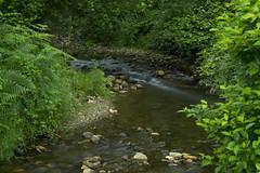 Bend in the river (Jacko004) Tags: longexposure river bend green water rocks nikond5200 wicklow ireland bigstopper july 2016