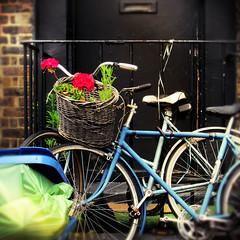 recycled (hauntedmansion) Tags: stephenmay lambeth london se1