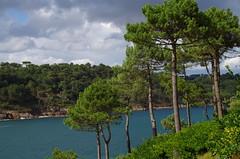 Mouëlan sur Mer - Bretagne (29) (FloLfp) Tags: finistère bretagne mouëlan sur mer plage pin bleu vert pentax k50 france