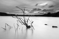 The Fallen Tree (Pentax Gareth) Tags: landscape waterscape water tree dead longexposure quarry lake art fineart outdoor hitech mono monochrome blackandwhite pentax k3ii