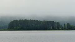 Lake Jaurakkajärvi in a foggy July morning (Pudasjärvi, 20160705) (RainoL) Tags: 2016 201607 20160705 fin finland fog fz200 geo:lat=6515942323 geo:lon=2767713547 geotagged jaurakkajärvi july lake landscape morning pohjoispohjanmaa pudasjärvi summer forest