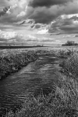 Deer Creek (Brent Harter Photography) Tags: brentharterphotography new art photography landscape blackandwhite zonesystem deercreek illinois clouds creek fine fineartphotography mortonillinois awardwinning peaceful