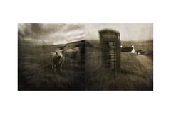 The Village Street (mark kinrade) Tags: manx village diptych vintage telephonebox markkinrade unusual