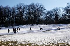 Winter in der Hasenheide (gornabanja) Tags: hasenheide park berlin neuklln snow schnee schlittenfahren toboggan tobogganing nature nikon d70 germany