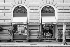 Camillo B. (*magma*) Tags: camillob roma rome bar coffee prati centro piazzacavour viacicerone street caff