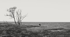 Desestres (Jos Ningum) Tags: nikond700 argentina santafe laguna rioparan litoral pesca bn