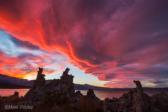 The Final Curtain (Mimi Ditchie) Tags: easternsierra fall monolake lake sunset clouds pinkclouds redclouds lenticularclouds tufas tufa southtufa
