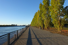 Old Port @ Ville-Marie @ Montreal (*_*) Tags: montreal mtl canada quebec northamerica 2016 autumn fall october city sunny morning villemarie automne vieuxport oldport port