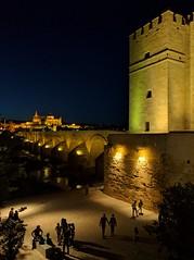 Puente romano y torre de la Calahorra. Córdoba (miguelno) Tags: puente romano torre calahorra roman bridge tower google nexus 5 teléfono smartphone lg lge córdoba andalucía andalusia encamisados kdd