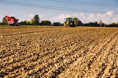 (Fotos aus OWL) Tags: traktor grimme fendt drillen roden landwirtschaft