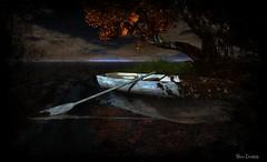 Autumn's Paintbrush (msbooodoolittle) Tags: autumn seasons fall boat secondlife poems art digitalart outdoors water booodoolittle flickr seasonsfield palsmeadow