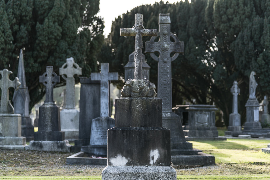 A QUICK VISIT TO GLASNEVIN CEMETERY[SONY F2.8 70-200 GM LENS]-122070