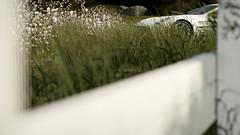 All Cars | One-77, Bonus #5 (Mr. Pebb) Tags: turn10 t10 playgroundgames photomode forzahorizon3 fh3 forza horizon3 astonmartinone77 videogame british supercar rearwheeldrive rwd frontengined v12 xboxonephotomode xboxone