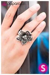 502_ring-silverkit2april-box01