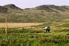 Guassa Plateau (nep000) Tags: africa bird trek highlands plateau hike lodge ethiopia conservationarea guassa