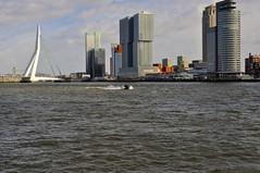 Erasmusbrug en Kop van Zuid, Rotterdam (Arjan Hamberg) Tags: river rotterdam brug maas kopvanzuid stad erasmusbrug rivier