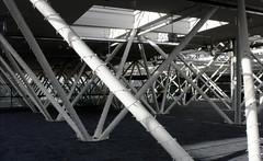Support (Mary Ellam) Tags: shadow urban lines oregon portland poles
