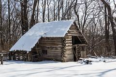 Log Barn (Larry Senalik) Tags: winter snow canon illinois unitedstates petersburg abraham lincoln dslr t3i newsalem 2015 menardcounty