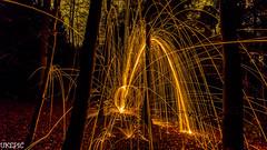 Forest Sparkler