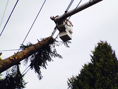 "Crews work in ""beastmode"" to restore customers quickly. (Puget Sound Energy) Tags: usa power unitedstates wind wash damage restoration kenmore pse crews kingcounty outage pugetsoundenergy beastmode"