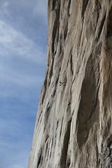 A filmmaker hauls himself and his gear up the Dawn Wall on Yosemite's El Capitan. (meganzabelholmes) Tags: california rock hiking adventure climbing yosemite elcapitan rockclimbing dawnwall