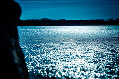 Frozen (rg69olds) Tags: lake water canon frozen nebraska omaha 6d canondigitalcamera canonef24105mmf4lisusm wehrspannlake canoneos6d 01172015
