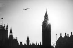 London (Manja Photography :: : . . .) Tags: winter blackandwhite bw london westminster abbey westminsterabbey canon bigben 400d