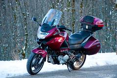 Honda Deauville (DOCESMAN) Tags: bike honda moto motorcycle biker motor deauville motorrad motorcykel moottoripyörä motocykel motorkerékpár nt700v ntv700 docesman mototsikl danidoces