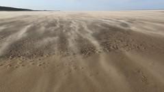 2C0A3688 Jon Perry - Enlightenshade, Holkham Bay,  10-1-15 zah (Jon Perry - Enlightenshade) Tags: beach norfolk windy sandstorm blowingsand highwind holkhambay 10115 windybeach jonperry enlightenshade 20150110