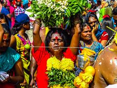 Thaipusam Hindu Festival (globaltrekkers.ca) Tags: festival silver temple caves sri malaysia cave kuala hindu batu chariot thaipusam lumpur ramayana mahamariamman