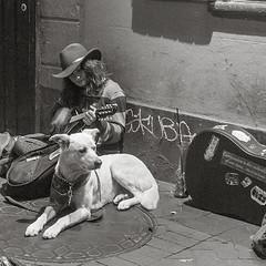 P221627523 bw s (VaMedia) Tags: street musician neworleans bourbonstreet