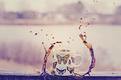 Coffee Splash Tentacles (HugsNotDrugs11385) Tags: butterfly butterflies bugs mug splash splashphotography coffeesplash