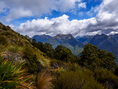 Viw from mt Haast (Thomas J. Walsh) Tags: newzealand mountains clouds forest bush hiking alpine tramping treking victoriaforestpark mthaast mtpenneal