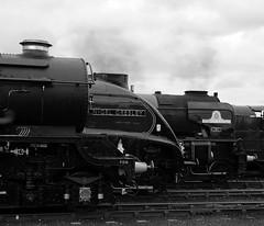 GWS 29523bwcr (kgvuk) Tags: trains locomotive tornado railways didcot steamlocomotive 460 gws didcotrailwaycentre 462 4498 6023 sirnigelgresley greatwesternsociety didcotengineshed 60007 kingedwardii kingclass 60163 a4pacific 81e a1pacific 60xx